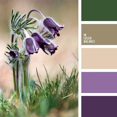 beige, color crema con tono café, colores de las flores silvestres, combinaciones de colores, morado, selección de colores, tonos claros de color marrón, verde oscuro, violeta claro.