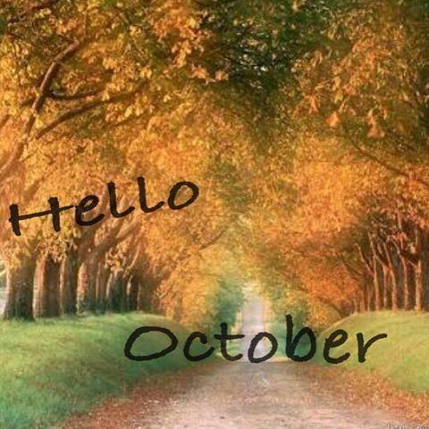 【garden_hairandnail】さんのInstagramをピンしています。 《あっという間に、10月ですね〜🍁 今年も100日を切ったそうです!! お洒落が楽しくなる時期に、どんどんなってきました〜 ぜひ、爪のお洒落もしましょーー💅  footジェルも見えない所のお洒落として、しませんか??秋冬にfootジェルして、周りよりワンランク上のお洒落さ んになっちゃいましょーー ^_^v  トップ画面にあるアメブロリンクから、簡単にご予約ができます!  Hair&Nail garden  東京都 渋谷区笹塚1-58-6  マルシンビル4F 03-5354-3847  営業時間10:00~19:00 火曜定休  gardenは 外国の方も大歓迎です^_^  #笹塚#幡ヶ谷 #初台 #新宿#美容室  #美容院  #ネイル  #ネイルサロン #ハンドジェル #フットジェル#ハンドケア#メンズ#メンズケアネイル#ワンカラー #フレンチ#ラメ #グラデーションネイル #お洒落#外国#外国人#コブクロ#timelessworld#海#ダイビング #happy#ワクワク #秋…