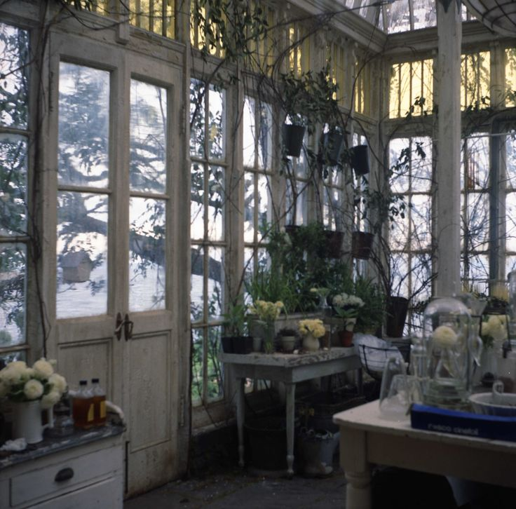 Practical Magic set ~ the greenhouse that every witchy girl dreams of!