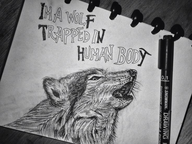 Yes im a wolf trapped in human body!   #pendrawing #art #sketch  Typography by rendy