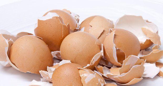 Vaječné skořápky mají v domácnosti širokou škálu využití.