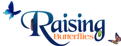 This website is an encyclopedia of knowledge designed both to help beginners understand the basics andtoencourage seasoned veterans to collaborate the specifics of raising butterflies from Western North America and beyond.