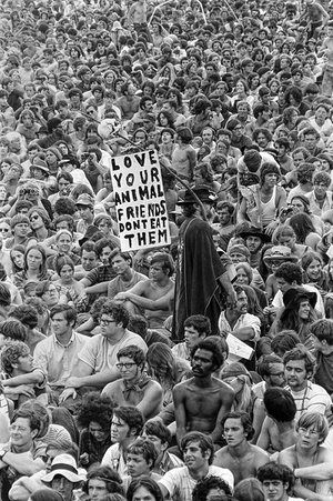 Woodstock Music & Art FairA man holds a pro-vegetarian poster amongst the crowd at the Woodstock Music & Art Fair, Bethel, NY,…