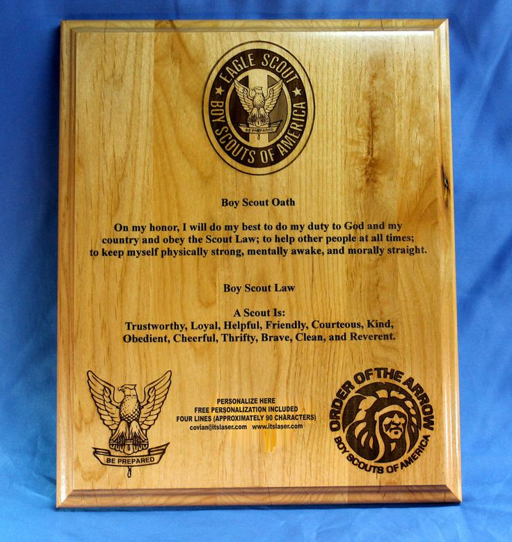 Details About Boy Scouts Of America Personalized Plaque