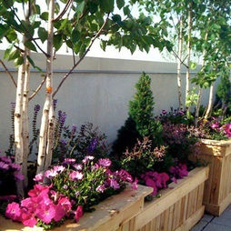 46 Best Gorgeous Gardens And Outdoor Spaces Images On Pinterest Outdoor Gardens Gardening And