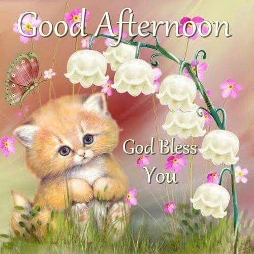 Good Afternoon, God Bless You afternoon good afternoon good afternoon quotes good afternoon images noon quotes afternoon greetings