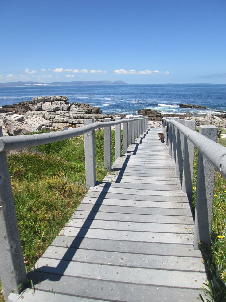 What a lovely sunny day it is in #hermanus today.  Took my staff to the sea facing apartments to clean and just had to take a picture of the view from the walkway to the rocky beach!