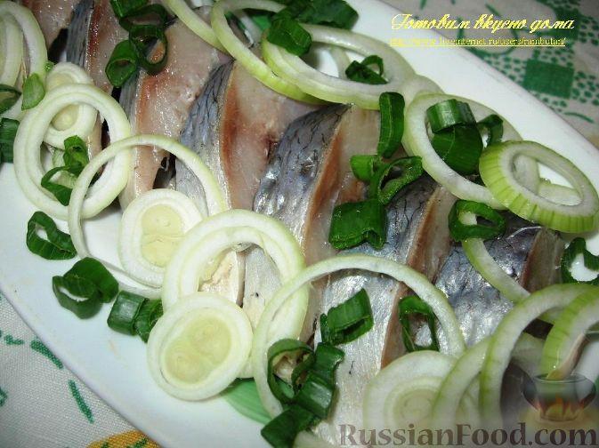 d dµn dµd n d dµd n d n n d d dµd d n d n n d n d d d n d d d d russianfood com