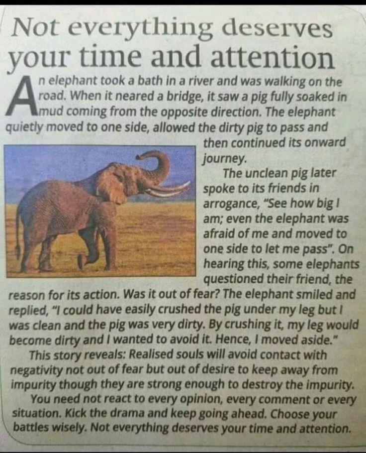 Pin by Nataraj Vr on stories that stir Interesting
