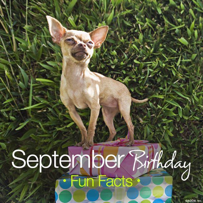 September Birthday Fun Facts - American Greetings Blog