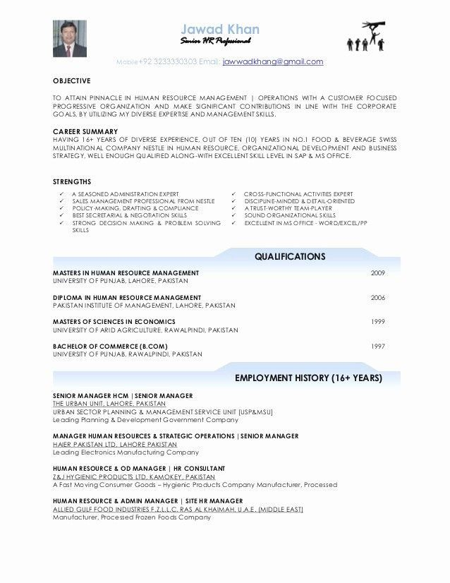 29 Resumes For Office Jobs Cover Letter Templates