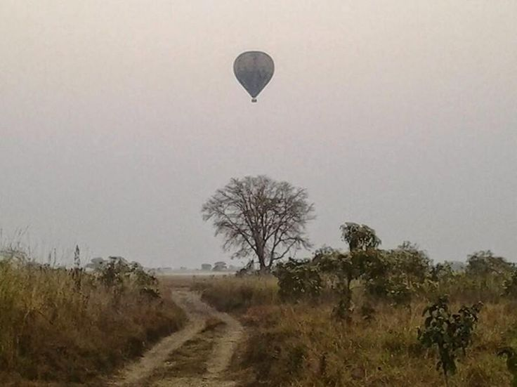 Our 2016 hot air ballooning safari season has kicked off in Kafue National Park's Busanga Plains, Zambia! From 1 Aug to 31 Oct 2016 guests visiting the Plains for three or more nights receive a complimentary hot air balloon safari - arguably the most exclusive hot air ballooning experience in Africa
