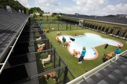 Big beautiful kennel pool.