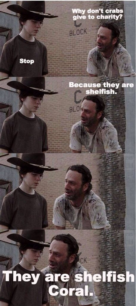 Why don't crabs give to charity. I have no idea why, but these Walking Dead strips always get me laughing