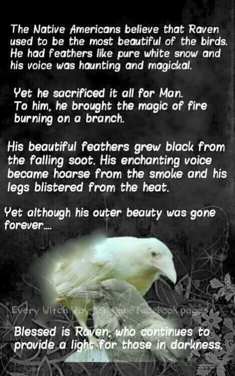 Native American Raven legend