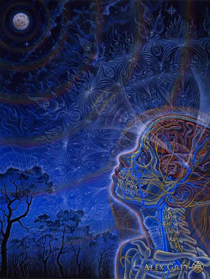 Image result for wonder by Alex Gray
