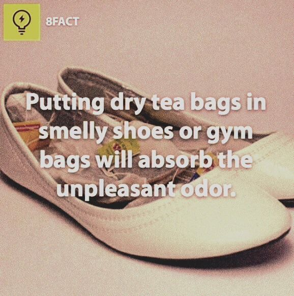 how to clean shoes with vinegar