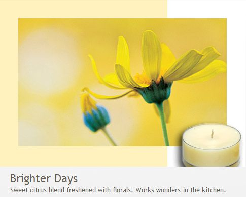 Brighter Days: Works wonders in the kitchen! Sweet citrus blend freshened with florals.