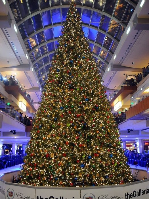 16 best Holidays in Houston images on Pinterest | Christmas lights ...