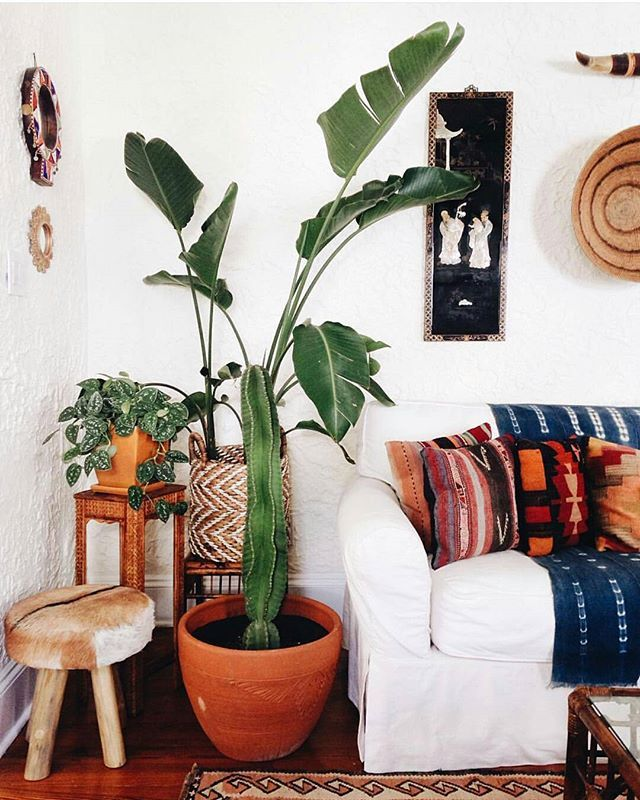 Interior Decorator Blog best 25+ mexican home decor ideas on pinterest | mexican style