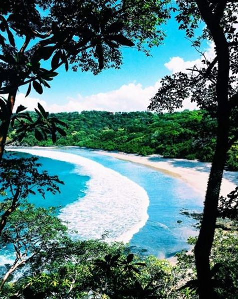 Down to explore the wild jungles of Costa Rica? Thanks to @contiki, you can.