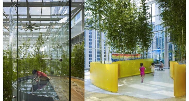 архитектор: Микянг Ким - Бамбуковая роща под куполом неба. Mikyoung Kim Design - Crown Sky Garden