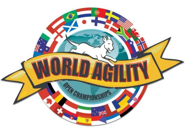 World Agility Open Championships 2012 -  http://worldog.com/world-agility-open-championships
