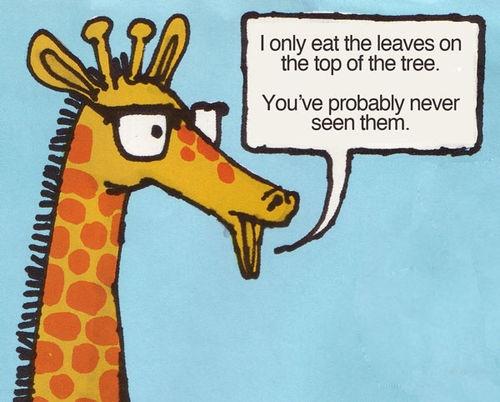 Hipster giraffe hahaha