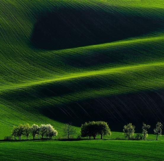 South Moravia Field