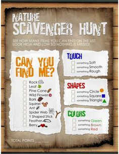 Max the four year old nephew's nature scavenger hunt. (Adapted slightly from list found at www.howtonestforless.com)