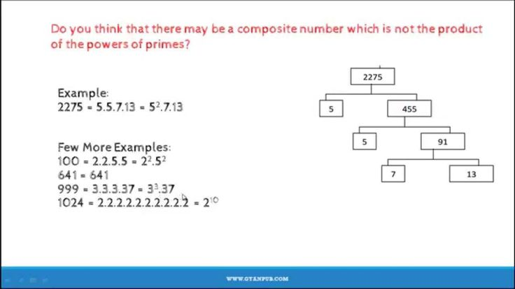 NCERT Solutions for Class 10 Fundamental Theorem of Arithmetic Real Number CBSE Class 10