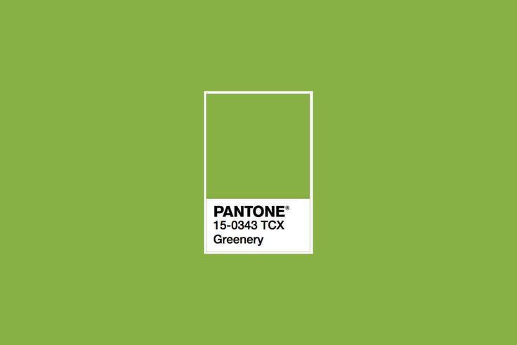 How to Design With Pantone's Color of the Year | Design Shack