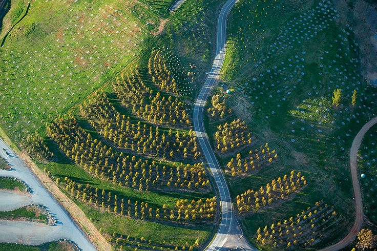 004-National Arboretum Canberra by TCL