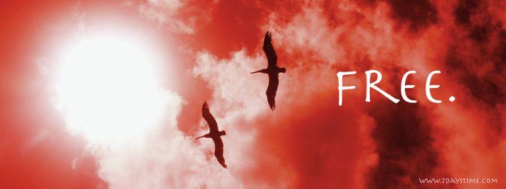 Free Inspirational Cover Photos: Days Time | Cover photos ...