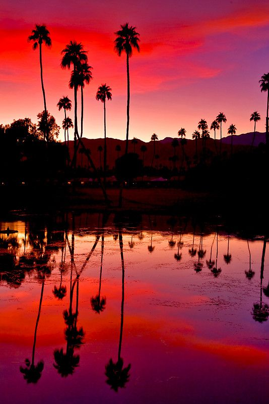 Palm Springs Sunset, California