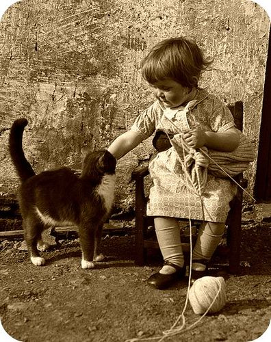 Chubby little hands knitting and petting the kitten.