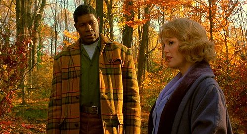 "Raymond Deagan (Dennis Haysbert) to Cathy Whitaker (Julianne Moore): ""I've learned my lesson about mixing in other worlds. I've seen the sparks fly. All kinds."" -- from Far from Heaven (2002) directed by Todd Haynes"