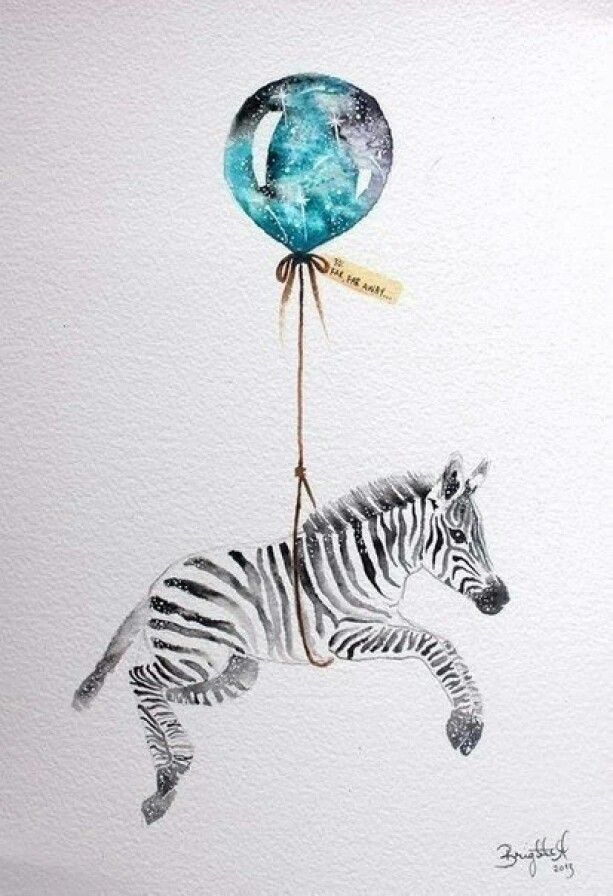 zebra drawings
