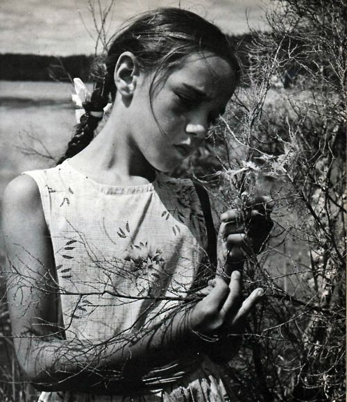 Photo by Ans Westra from We Live by a Lake (1972, William Heinemann).