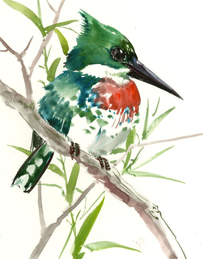 painted bird essays You May Also Find These Documents Helpful