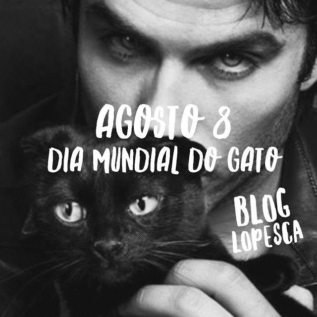 Agosto 8 Dia Mundial do Gato