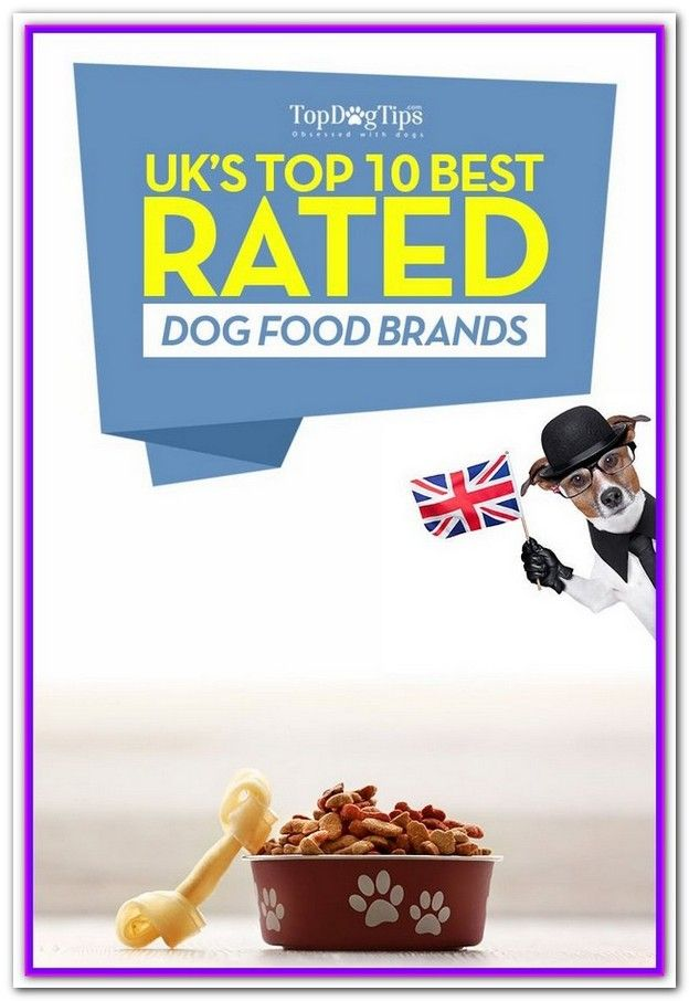 Top 10 Best Dog Foods Uk Best Dog Food Dog Food Recipes Best