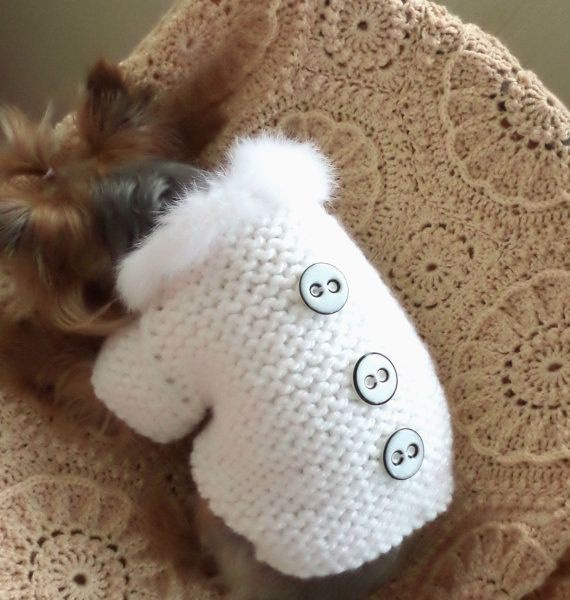 Large Medium Sweater Pet Sweater Costume by LyudmilaHandmade