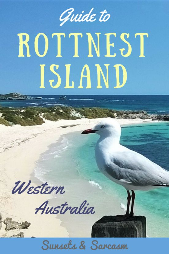 Your guide to Rottnest Island, Western Australia. A brilliant day trip from Perth, Rottnest Island is an unmissable place to visit in Western Australia with beautiful beaches, limestone reef to snorkel, budget accommodation, cute quokkas and heaps of fun things to do! Read my guide to find out where to stay on Rottnest and what to do on the island.