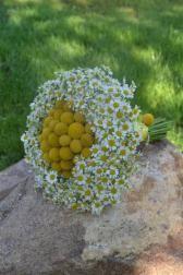 Букет невесты Букет из полевых цветов - Любит не любит
