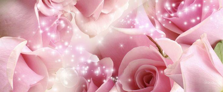 Sommer fuld af roser