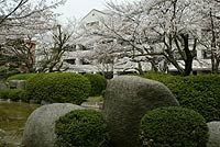 Philosophy, Thought and Culture — Graduate School of Letters / School of Letters, Osaka University