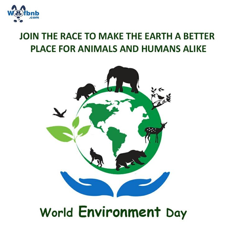 Join the race to make the Earth a better place for animals and humans alike