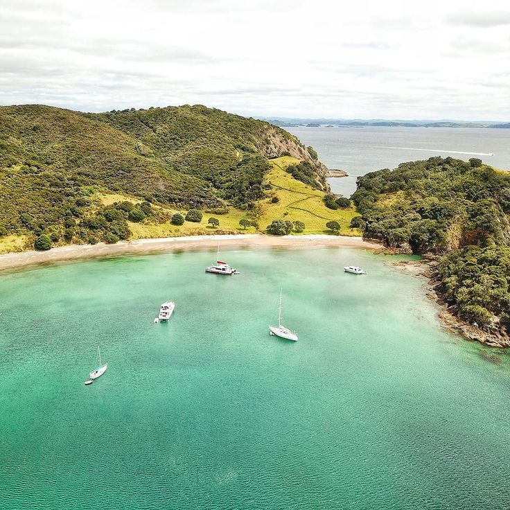 One of our favourite beaches in the Bay of Islands  The Navy operated a mine control station in Army Bay of Moturua Island in World War II as part of the coastal defence strategy for the Bay of Islands. You can still see the concrete pads from the barracks and a mine observation post at the top of the hill on the right. - @theglobalcouple on Instagram