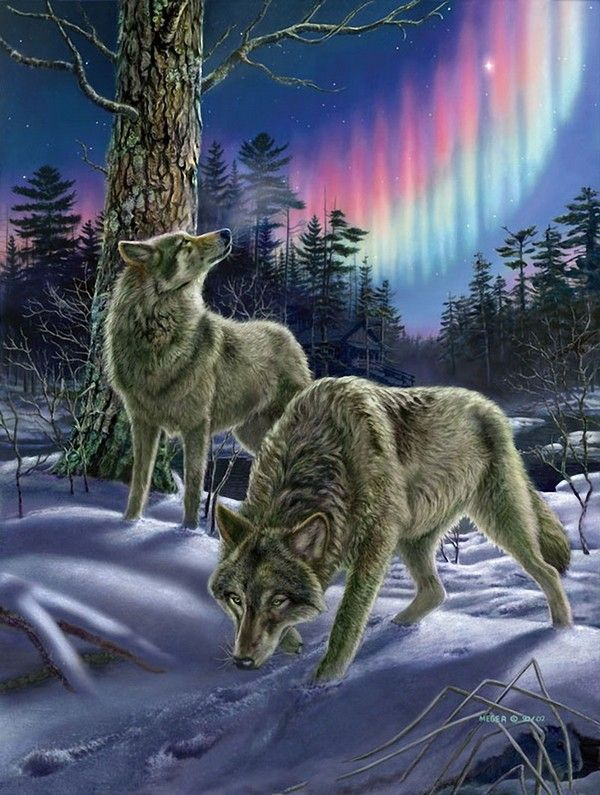 Wolves...James Meger